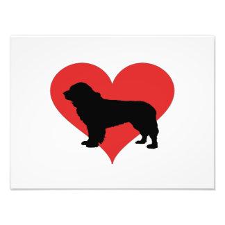 Terra Nova com um coração vermelho grande Impressão De Foto