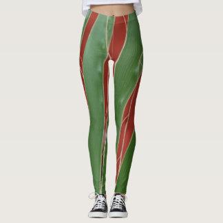 Terracotta e teste padrão verde da folha leggings