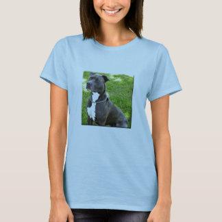 terrier americano do pitbull camiseta