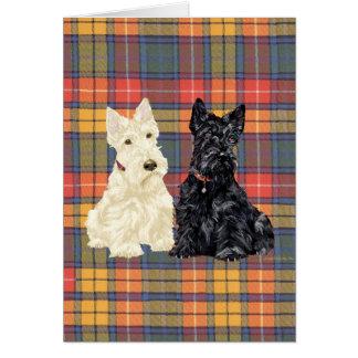 Terrier escoceses Wheaten e pretos Cartão Comemorativo