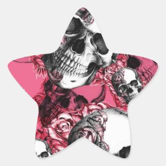 Teste padrão do crânio do rosa do rosa adesito estrela