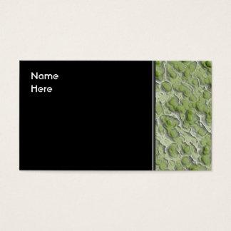 Teste padrão do efeito das algas verdes cartão de visitas
