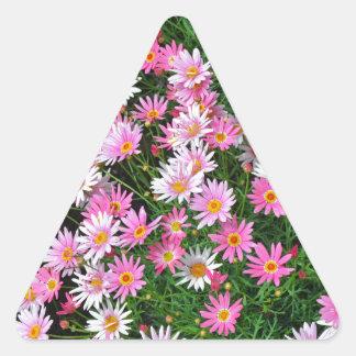 Teste padrão floral das margaridas cor-de-rosa adesivo triangular