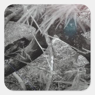 Textura 1 da foto adesivo quadrado