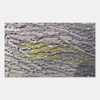 Textura de madeira amarela do musgo adesivos
