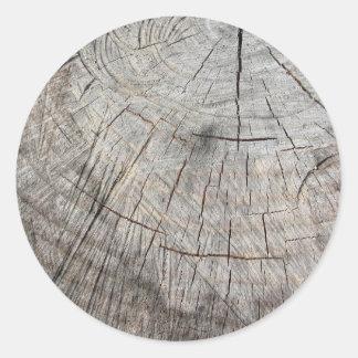Textura de madeira do tronco de pinheiro cortado adesivo