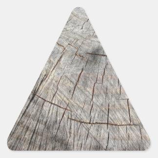 Textura de madeira do tronco de pinheiro cortado adesivo triangular