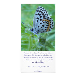 The butterfly dream card cartoes com foto personalizados