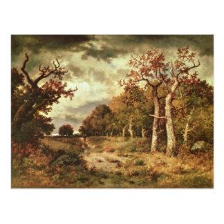 The Edge da floresta, 1871 Cartão Postal