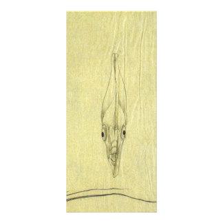 Threadfin Trevally do vintage, peixe africano da 10.16 X 22.86cm Panfleto