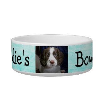 Tigela Azul personalizado do Aqua da bacia do cão da foto