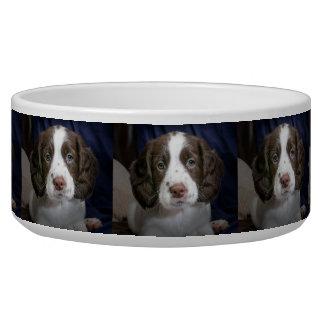 Tigela Bacia personalizada do alimento para cães da foto