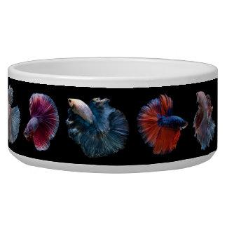 Tigela Bacias coloridas do animal de estimação dos peixes