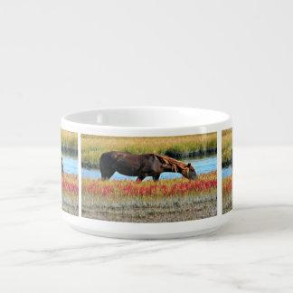 Tigela De Sopa Cavalo selvagem que come em The Field