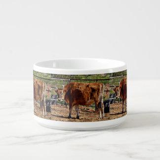 Tigela De Sopa Vaca de Brown na bacia do pimentão dos tijolos