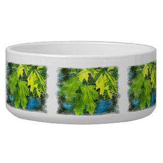 Tigela Folhas de bordo verdes frescas