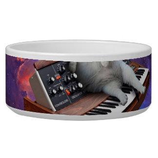 Tigela gato do teclado - memes do gato - gato louco