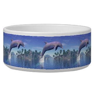 Tigela Golfinho nos trópicos - 3D rendem
