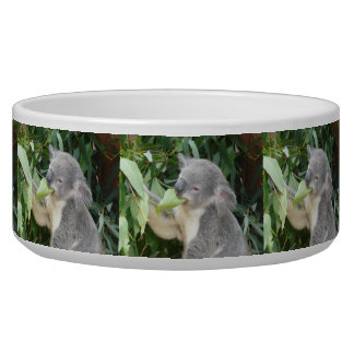 Tigela Koala que come a folha da goma