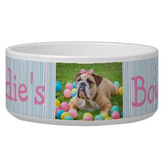 Tigela Rosa personalizado e azul da bacia do cão da foto