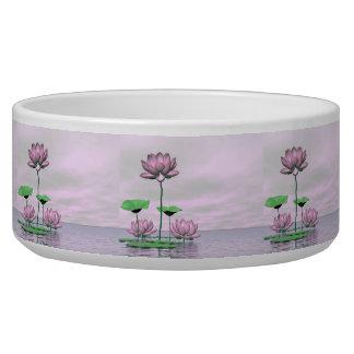 Tigela Waterlilies e flores de lótus cor-de-rosa - 3D