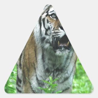 Tigre Adesivos Triângulo