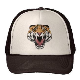 Tigre Boné