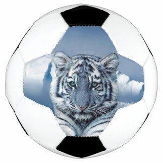 Tigre branco azul bola de futebol
