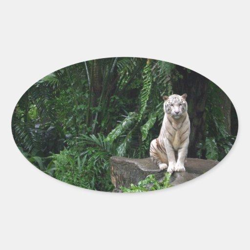 Tigre branco na selva adesivos em formato oval