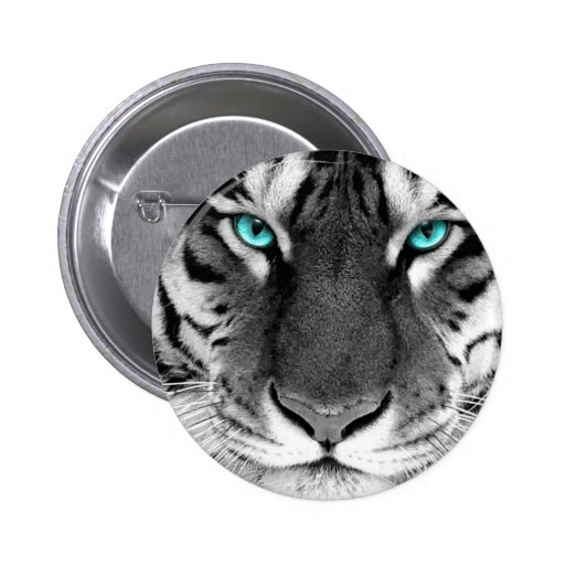 Tigre branco preto boton