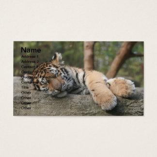 Tigre de bebê do sono cartão de visitas
