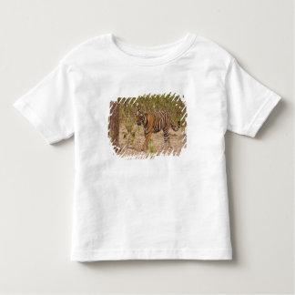 Tigre de Bengal real que move ao redor o arbusto, Camisetas