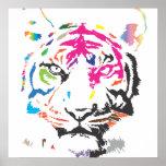 Tigre do arco-íris poster
