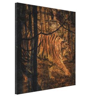 Tigre selvagem majestoso dos animais selvagens da impressão em tela