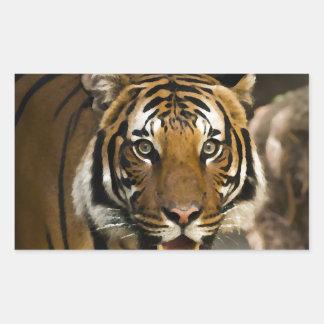 Tigre Siberian Adesivo Retangular