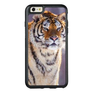 Tigre Siberian na neve, China