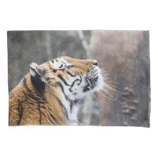 Tigre Wistful do inverno
