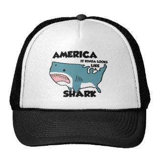 Tipo de América dos olhares como um chapéu do Boné