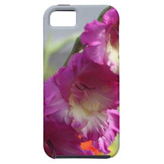 Tipo de flor do jardim (hortulanus do tipo de flor capa para iPhone 5