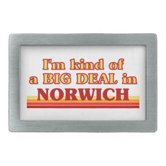 Tipo de I´m de uma grande coisa em Norwich