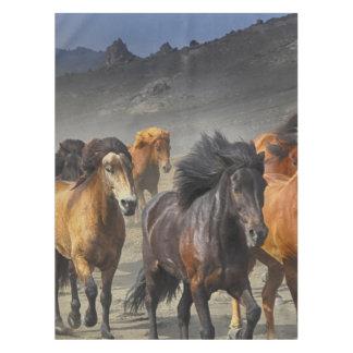 Toalha De Mesa Cavalos selvagens