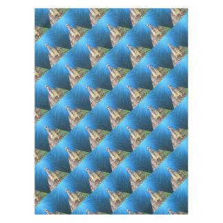 Toalha De Mesa Noite azul de Meerkat, _