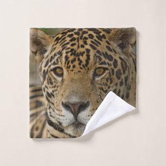 Toalha De Rosto Retrato felino de Jaguar