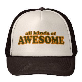 Todos os tipos do chapéu impressionante boné