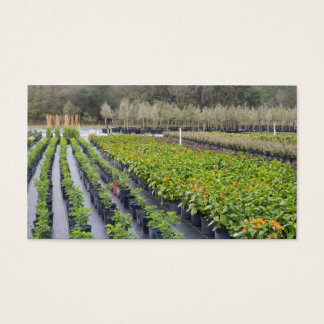 Tomar partido-Berçário Personalize-2 e jardinagem Cartão De Visitas