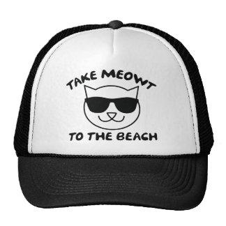 Tome Meowt à praia Boné