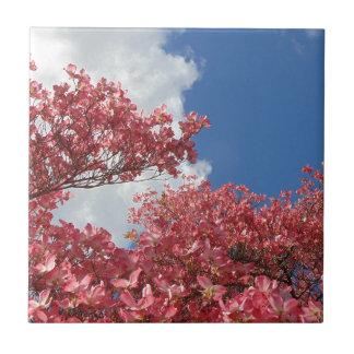 Torrente das flores