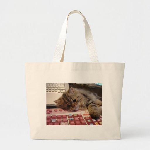 Trabalhará para um catnip bolsas para compras