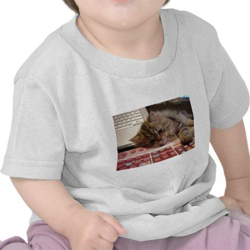 Trabalhará para um catnip tshirts