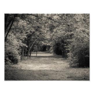 Trajeto ao desconhecido impressão de foto